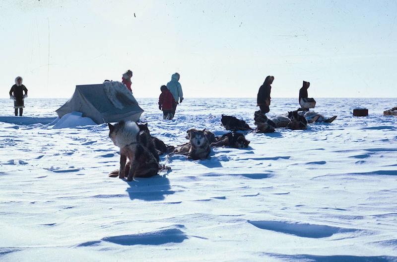 https://arrl-web002.artsrn.ualberta.ca/icrc/ICRC-PDF/Dr. Hunt Photos/Dr. D.E. Hunt photos - Inuvik 1968-69 160.jpg