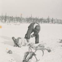 Ren Lake slaughter