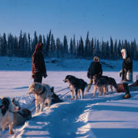 Maureen Hunt with Dogsled on the Mackenzie River