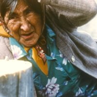 https://arrl-web002.artsrn.ualberta.ca/icrc/201801-upload/Qikiqtaruk - Herschel Island- Cultural Study/Herschel Is- Cultural Study_ Jean Tardiff at Shingle Point-1990  Yukon Heritage Branch.jpg