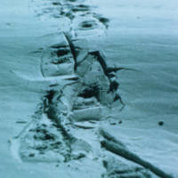 https://arrl-web002.artsrn.ualberta.ca/icrc/ICRC-PDF/Dr. Hunt Photos/Dr. D.E. Hunt photos - Inuvik 1968-69 167.jpg