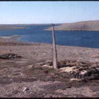 North end of Cape Parry, Whaler's grave (Sept '76)0.jpg