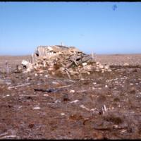 North end of Cape Parry, Whaler's hut (Sept '76)0.jpg