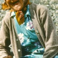 https://arrl-web002.artsrn.ualberta.ca/icrc/201801-upload/Qikiqtaruk - Herschel Island- Cultural Study/Jean Tardiff- Herschel Island Cultural Study Shingle Point- July 1990-Yukon Heritage Branch.jpg